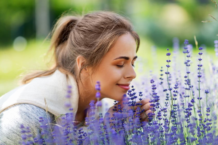 Happy young woman smelling lavender flowers at summer garden