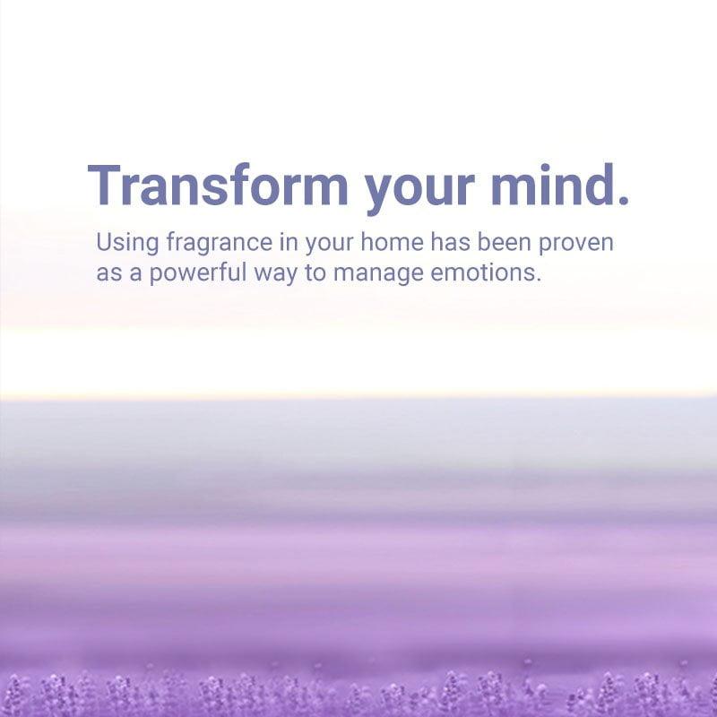 Fragrance Made Easy 01 Left 800x800 1