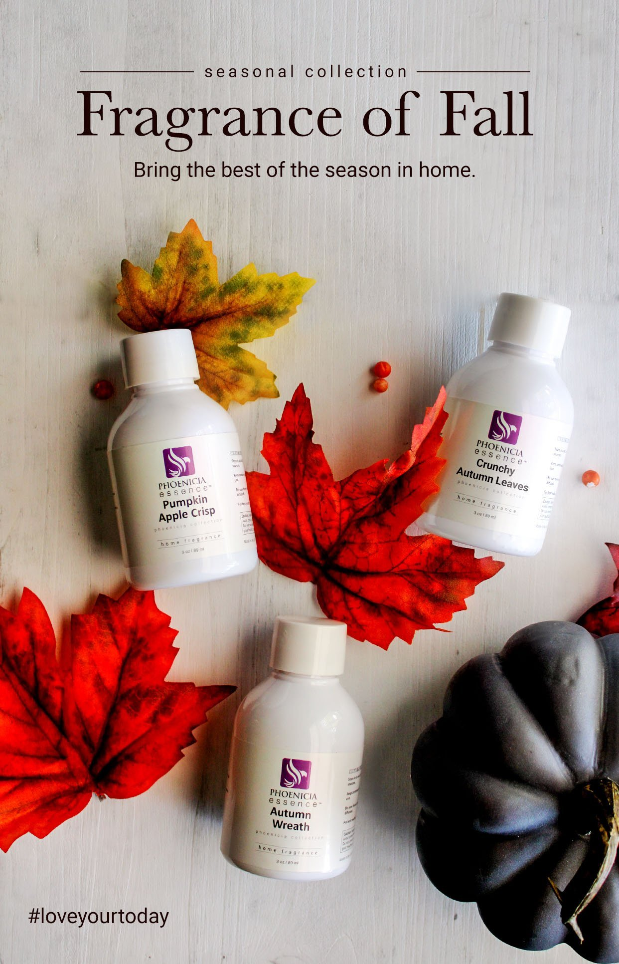 Fall Fragrance Collection Image